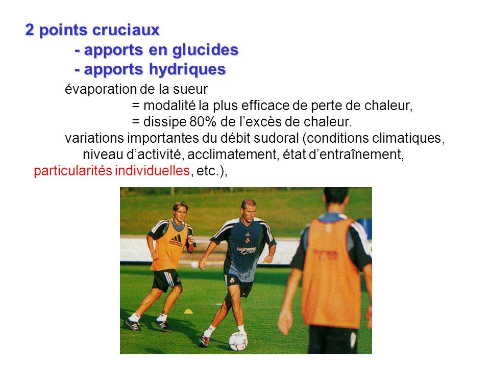 2 points cruciaux - apports en glucides - apports hydriques