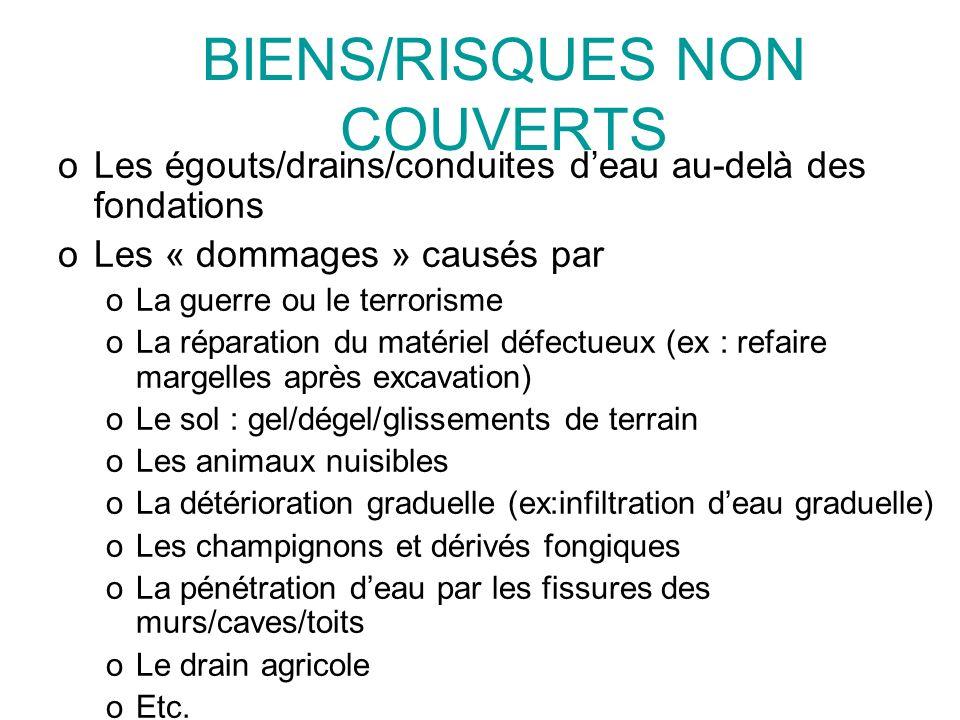 BIENS/RISQUES NON COUVERTS