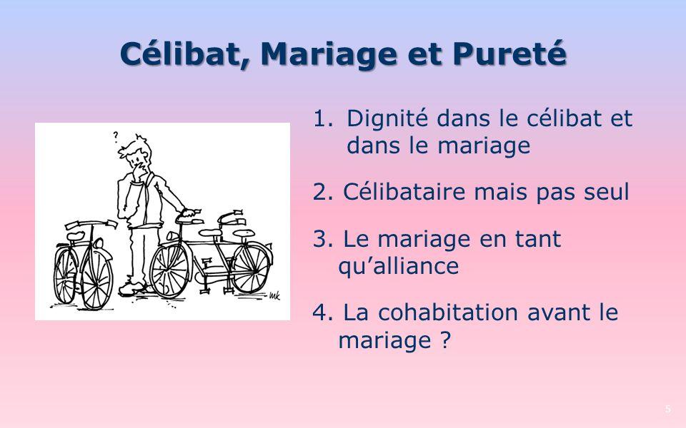 Célibat, Mariage et Pureté