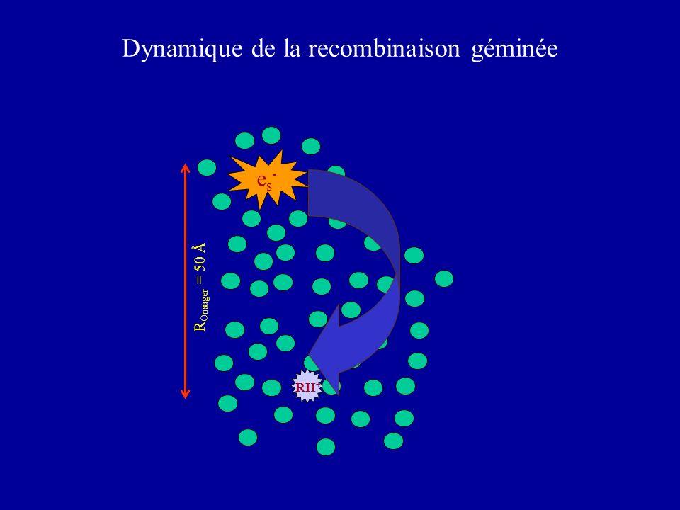 Dynamique de la recombinaison géminée