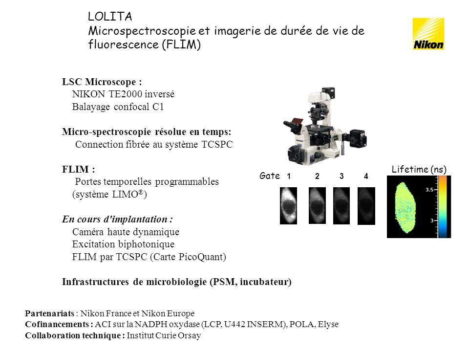 Microspectroscopie et imagerie de durée de vie de fluorescence (FLIM)