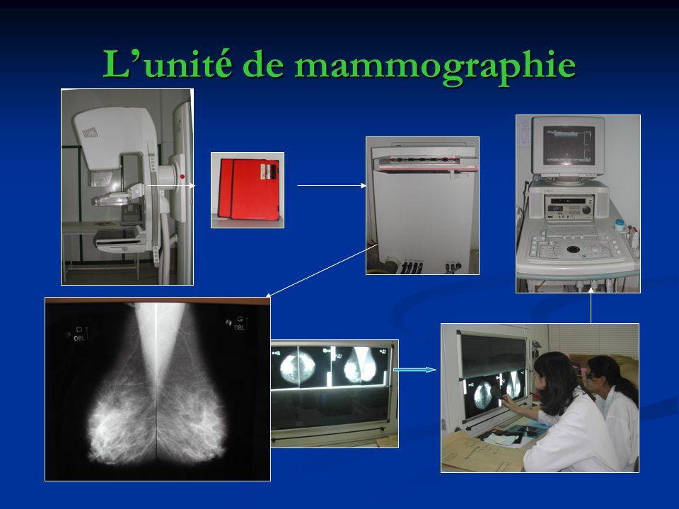 L'unité de mammographie