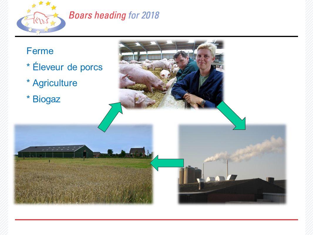 Ferme * Éleveur de porcs * Agriculture * Biogaz