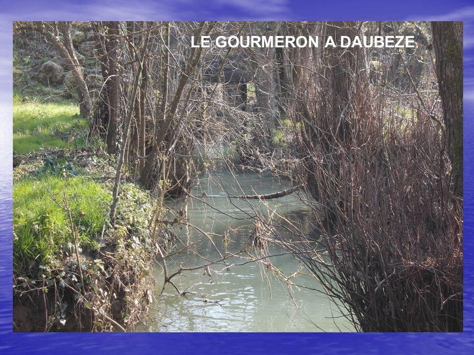 LE GOURMERON A DAUBEZE