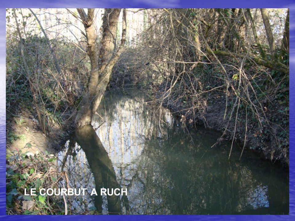 LE COURBUT A RUCH