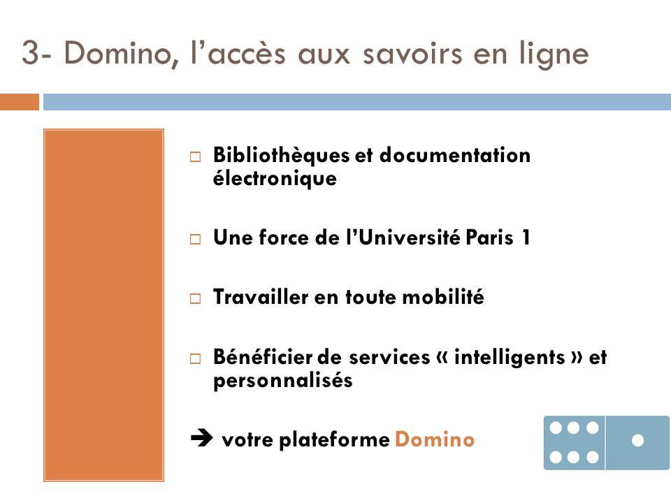 3- Domino, l'accès aux savoirs en ligne