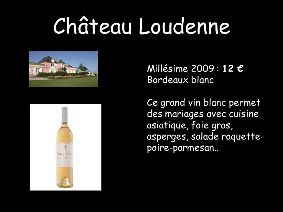 Château Loudenne Millésime 2009 : 12 € Bordeaux blanc