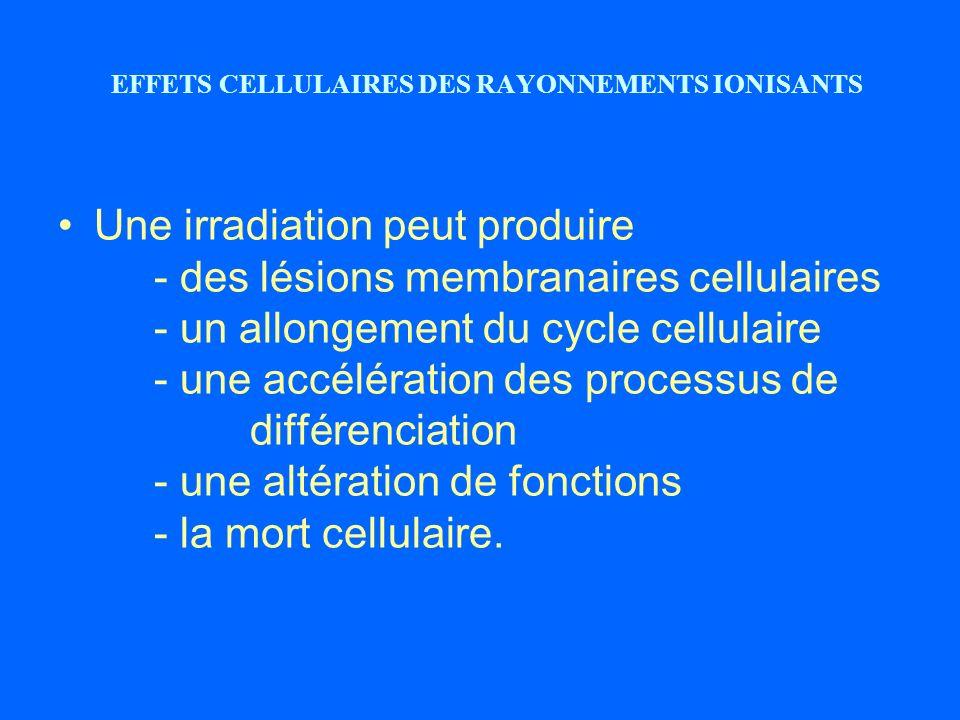 EFFETS CELLULAIRES DES RAYONNEMENTS IONISANTS