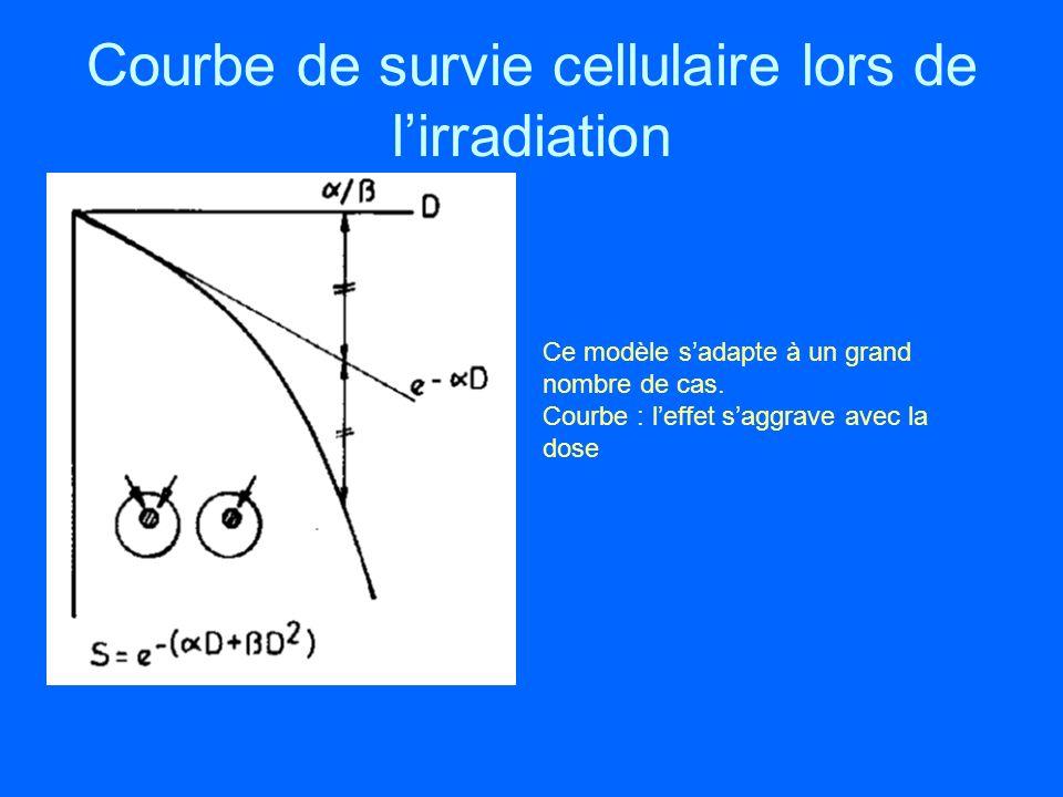 Courbe de survie cellulaire lors de l'irradiation