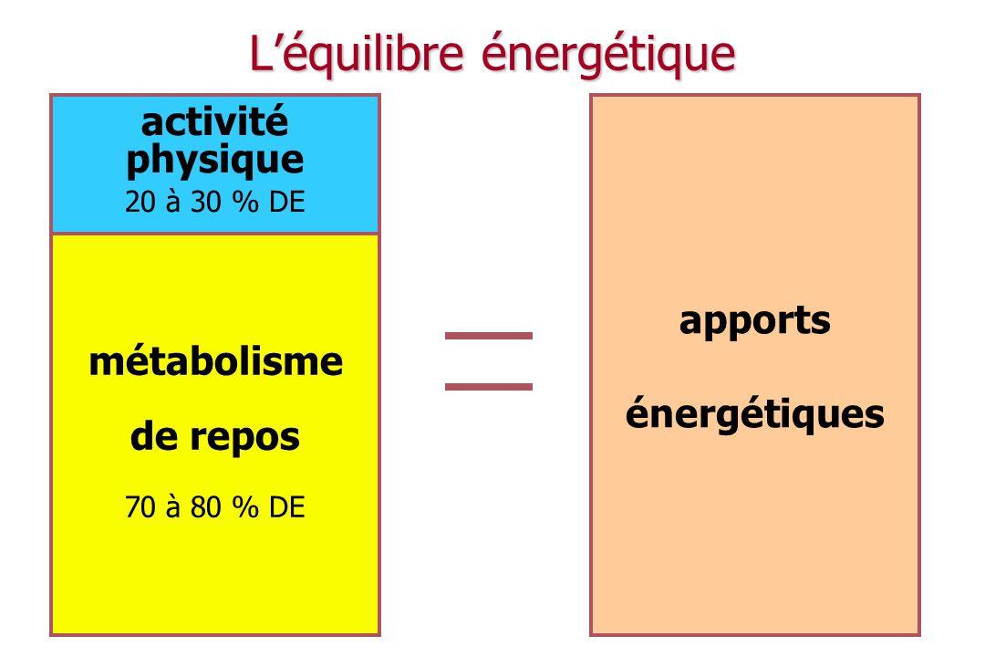 L'équilibre énergétique