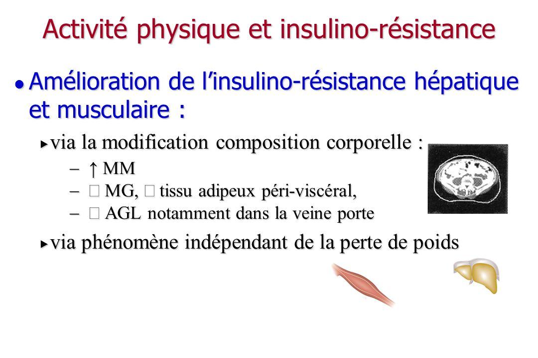 Activité physique et insulino-résistance