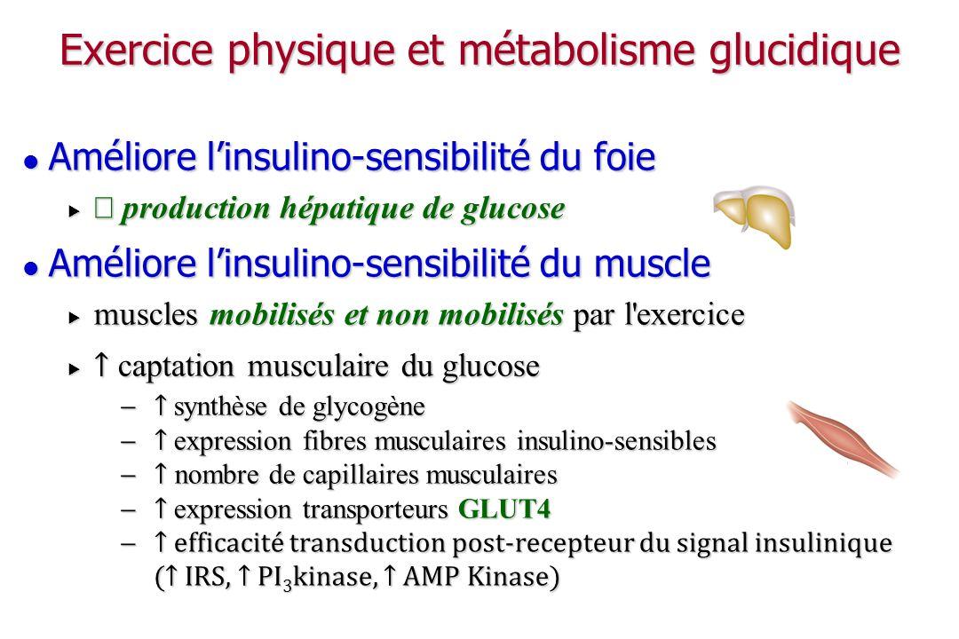 Exercice physique et métabolisme glucidique