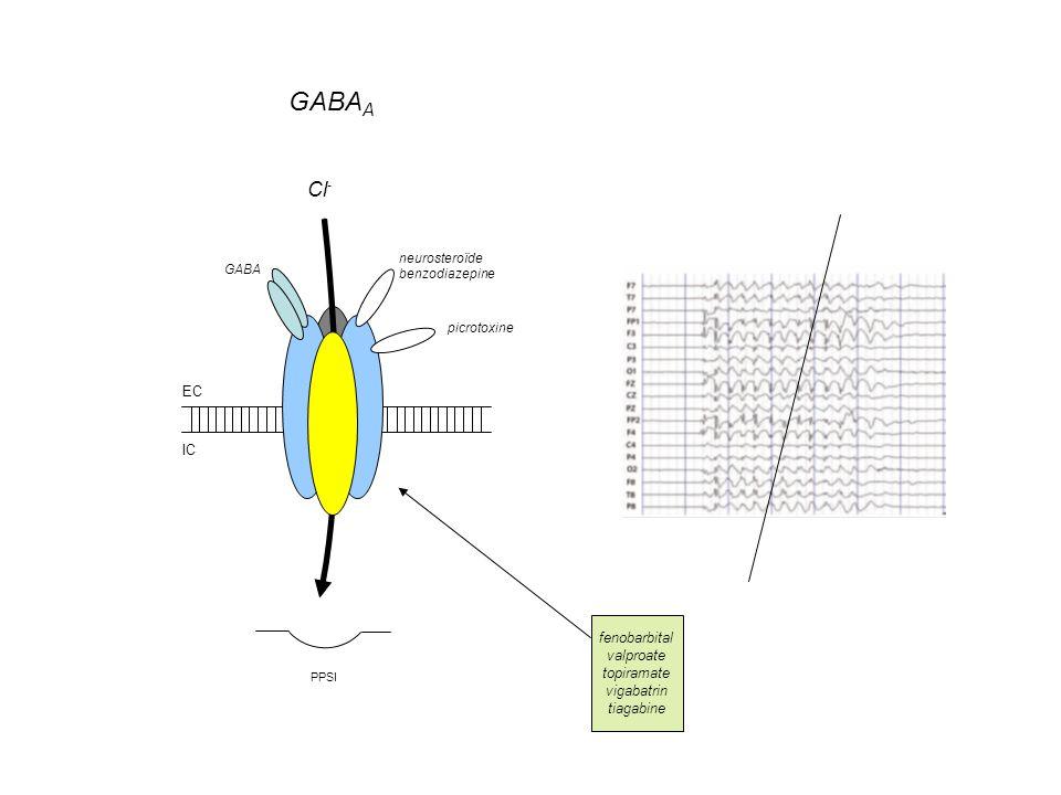 GABAA Cl- EC IC fenobarbital valproate topiramate vigabatrin tiagabine
