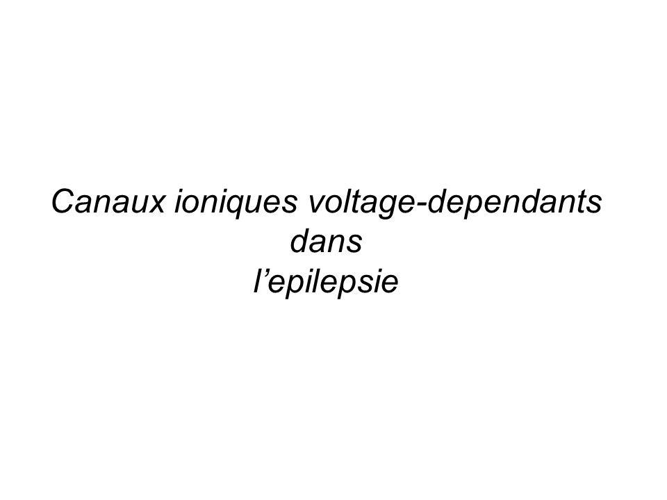 Canaux ioniques voltage-dependants