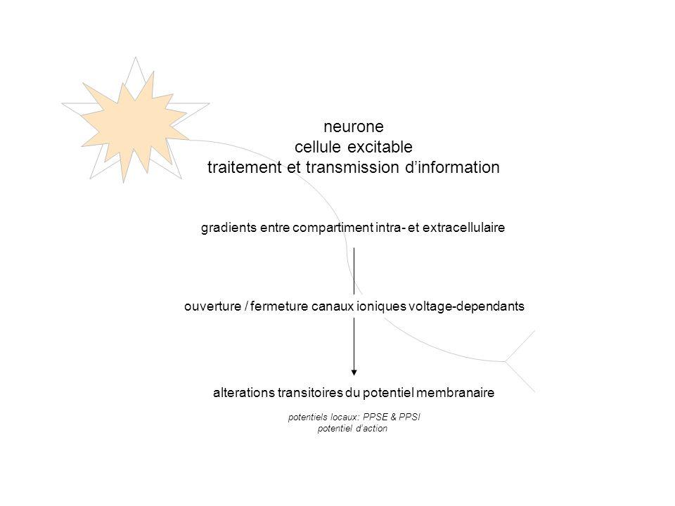 traitement et transmission d'information