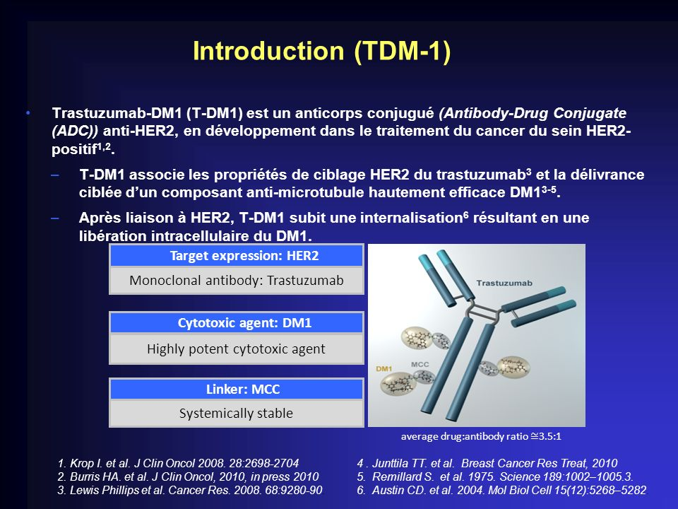 Introduction (TDM-1)