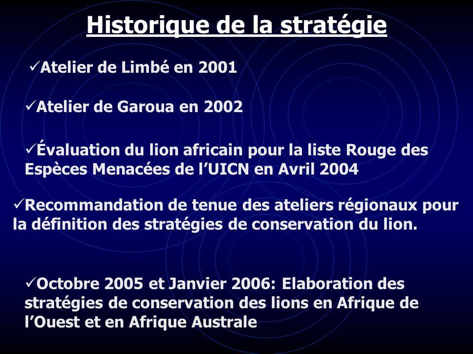 Historique de la stratégie