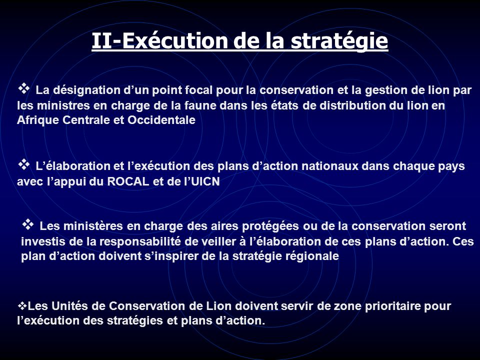 II-Exécution de la stratégie