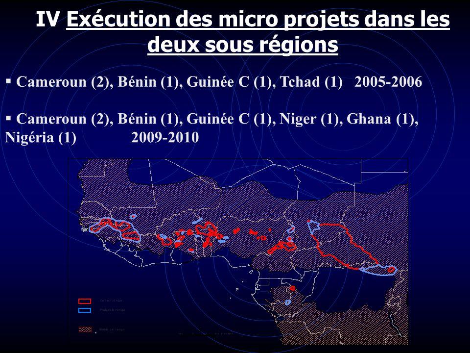 IV Exécution des micro projets dans les deux sous régions