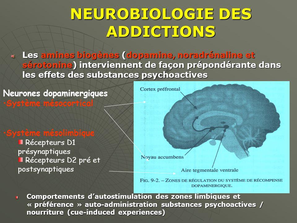 NEUROBIOLOGIE DES ADDICTIONS