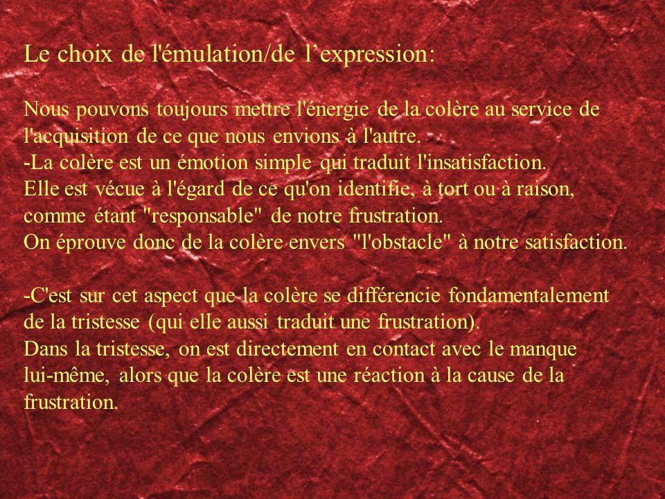 Le choix de l émulation/de l'expression: