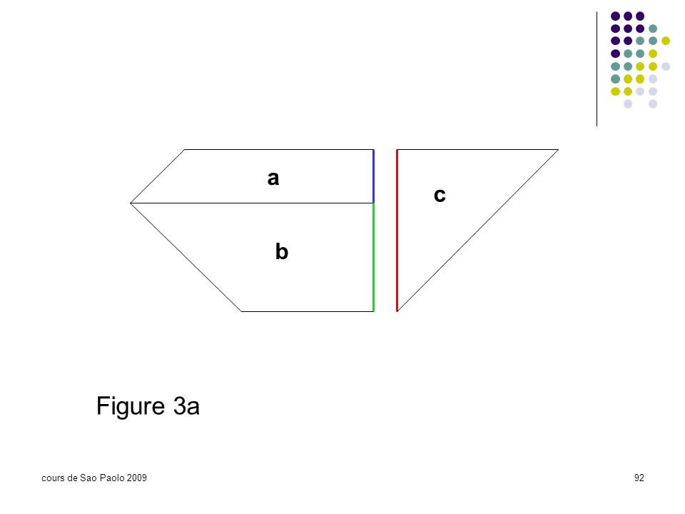 a c b Figure 3a cours de Sao Paolo 2009