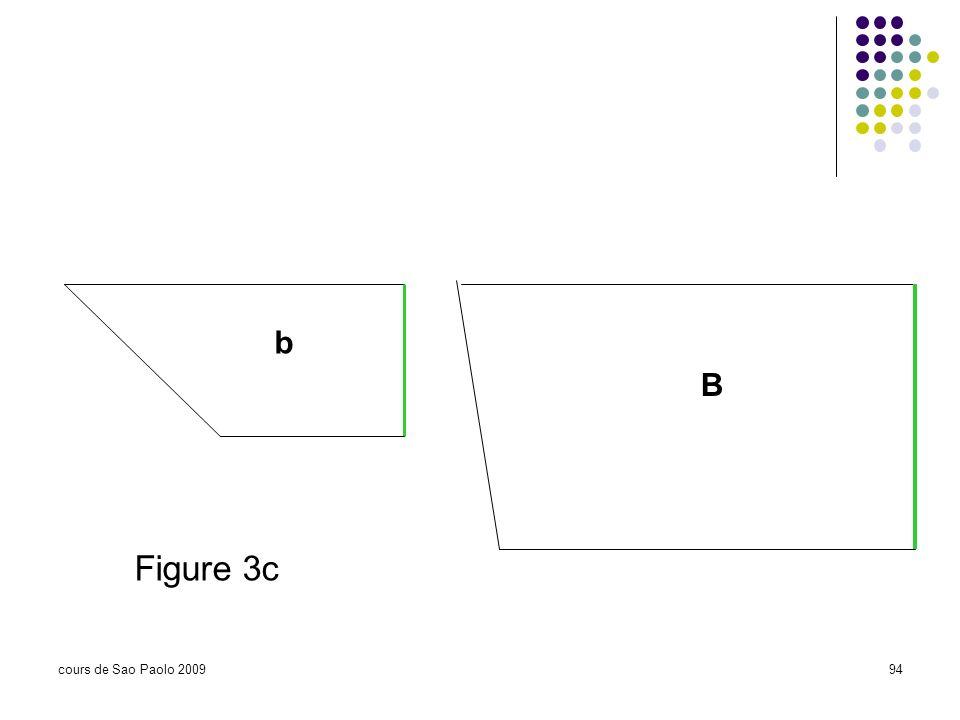 b B Figure 3c cours de Sao Paolo 2009