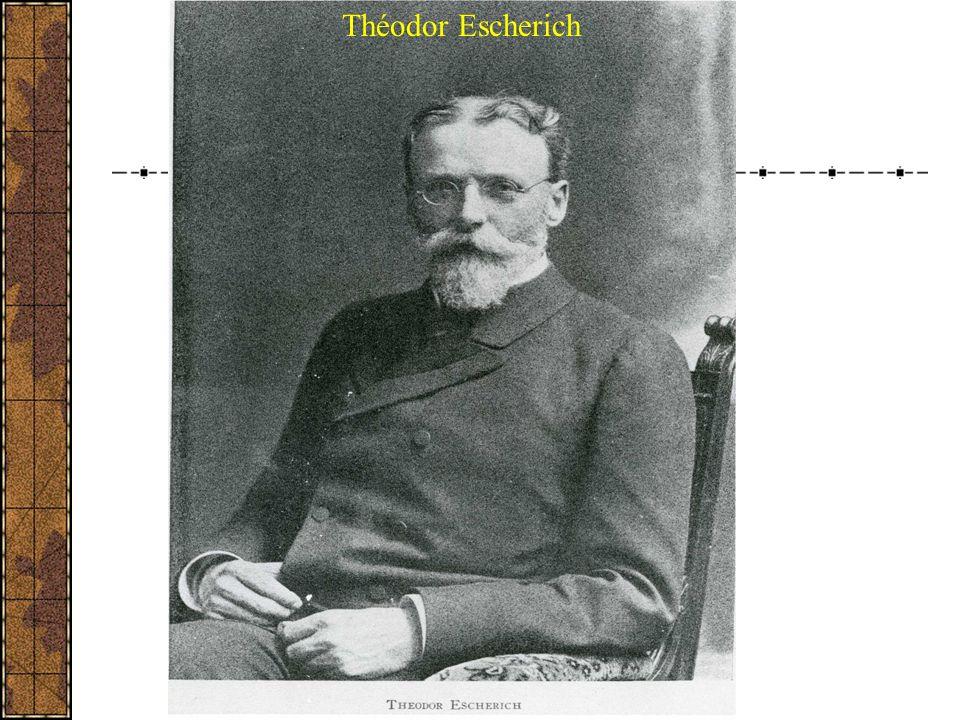 Théodor Escherich