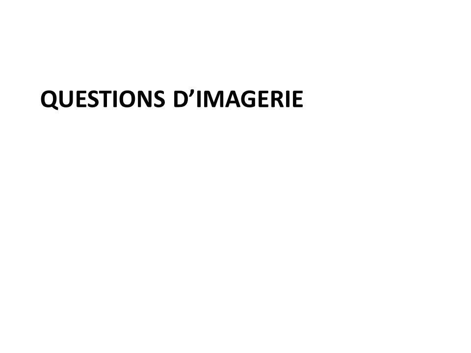 QUESTIONS D'IMAGERIE