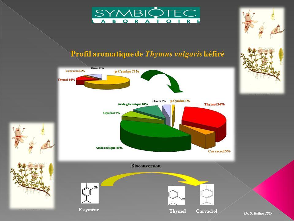 Profil aromatique de Thymus vulgaris kéfiré