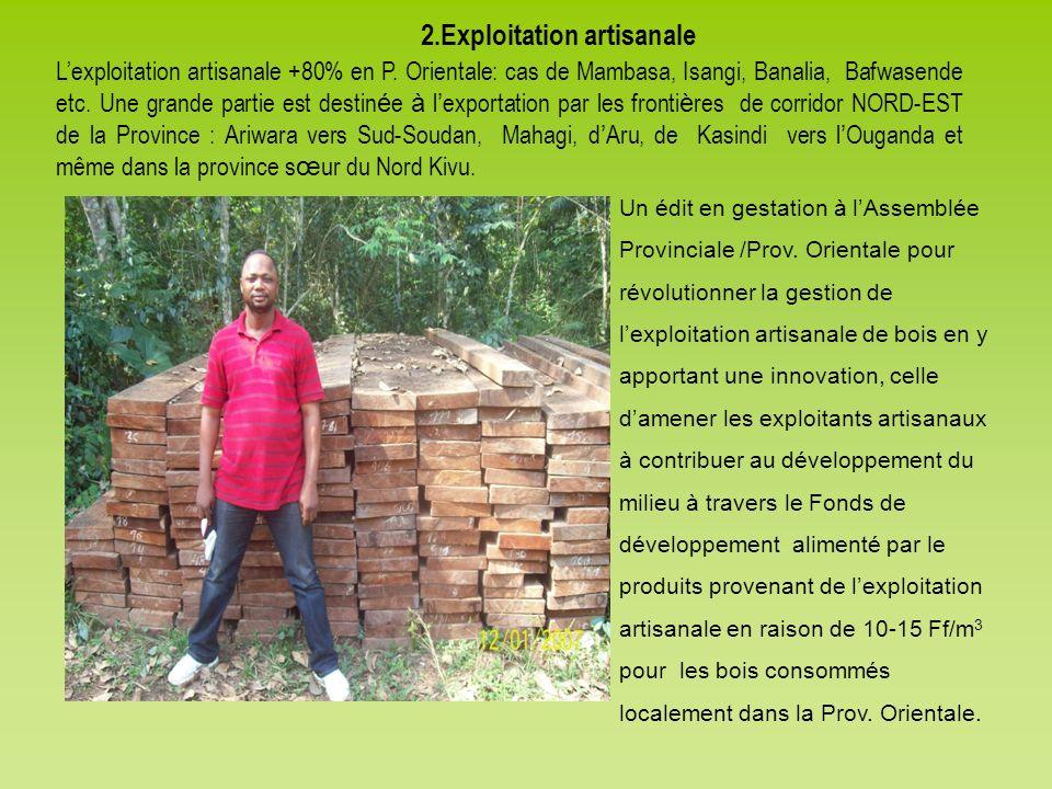 2.Exploitation artisanale