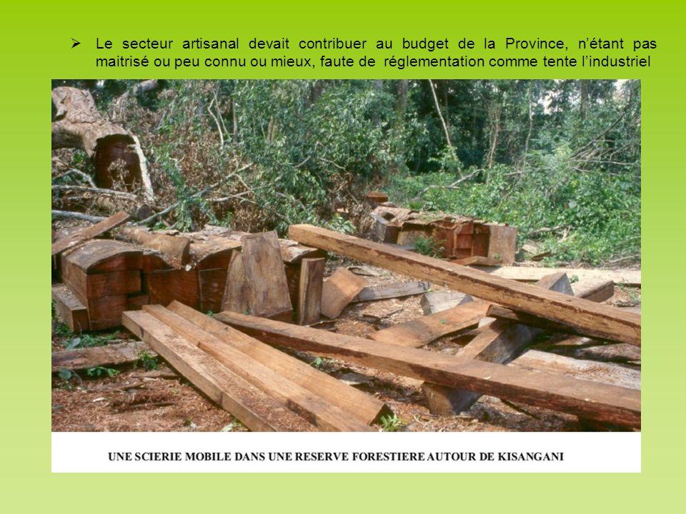 Le secteur artisanal devait contribuer au budget de la Province, n'étant pas maitrisé ou peu connu ou mieux, faute de réglementation comme tente l'industriel