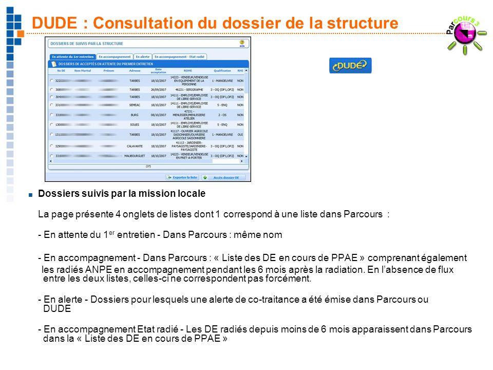 DUDE : Consultation du dossier de la structure