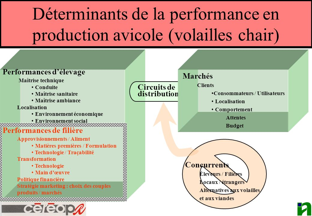 Déterminants de la performance en production avicole (volailles chair)
