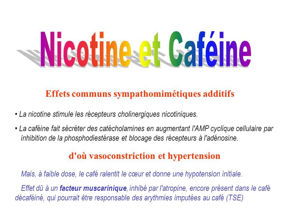 Nicotine et Caféine Effets communs sympathomimétiques additifs
