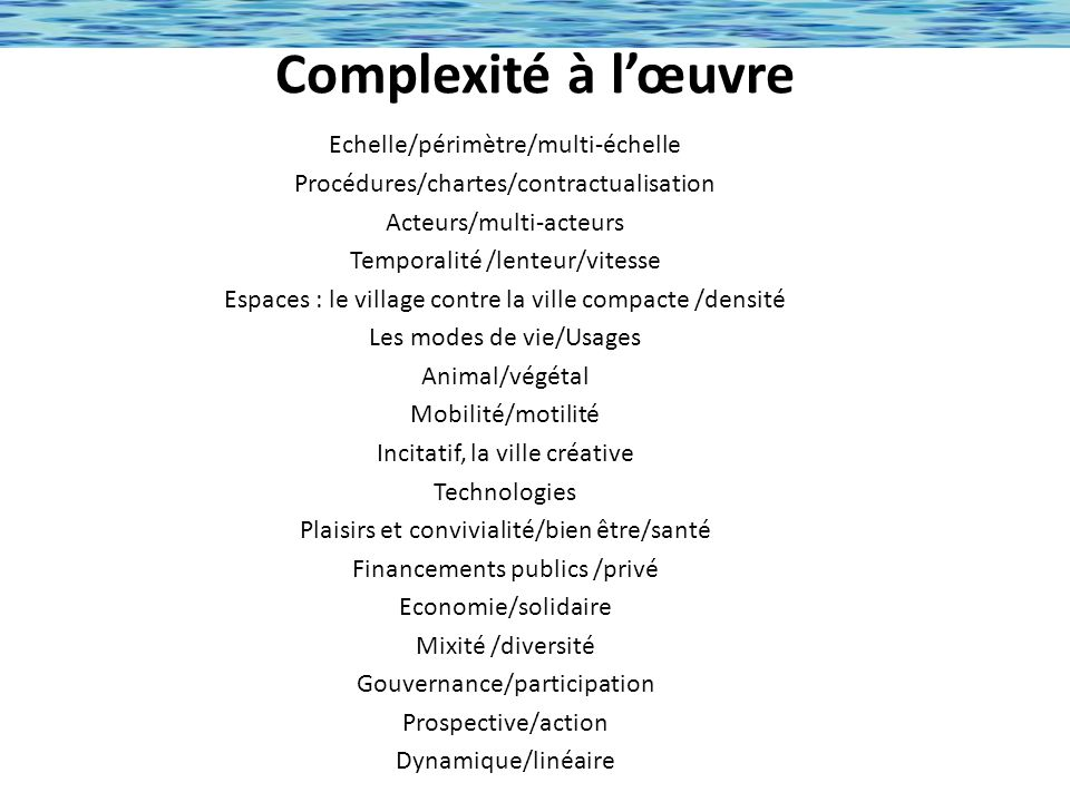 Complexité à l'œuvre Echelle/périmètre/multi-échelle
