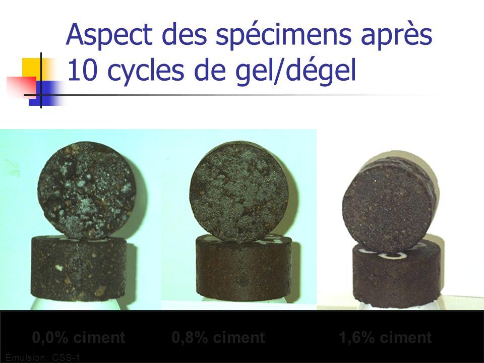 Aspect des spécimens après 10 cycles de gel/dégel