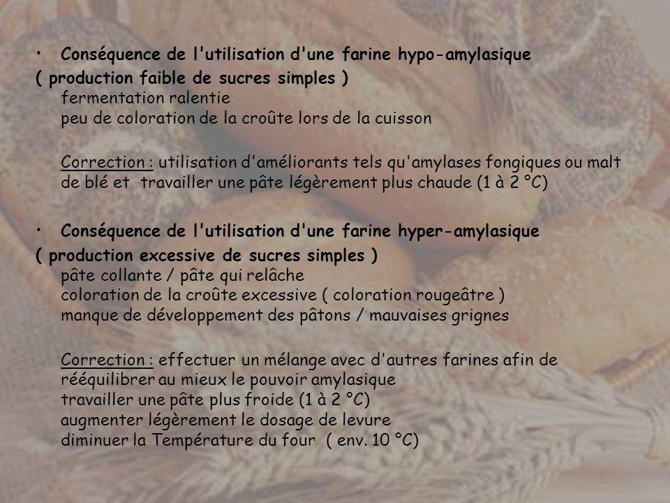Conséquence de l utilisation d une farine hypo-amylasique