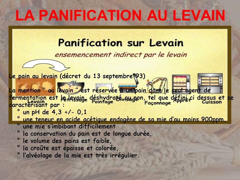 LA PANIFICATION AU LEVAIN