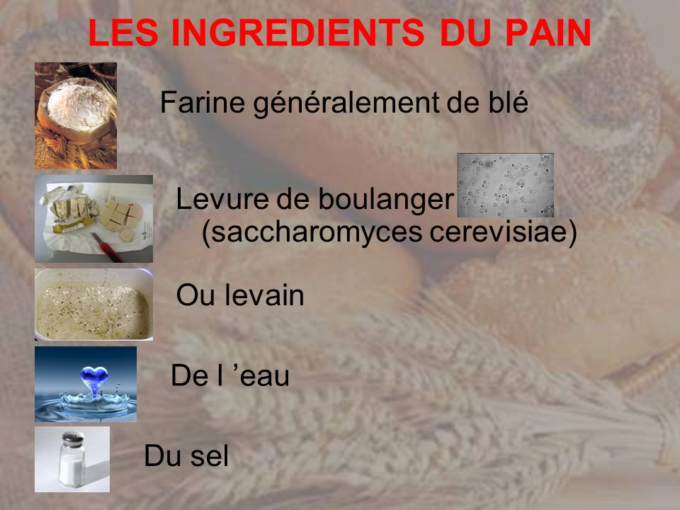 LES INGREDIENTS DU PAIN