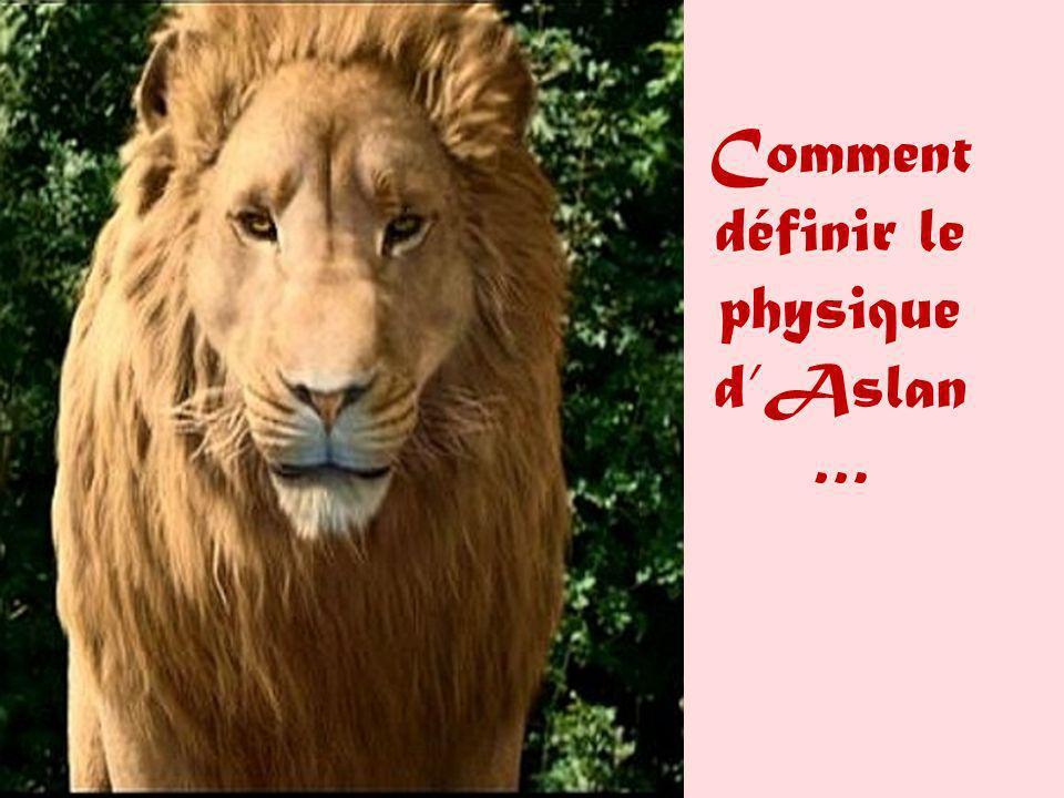 Comment définir le physique d'Aslan…