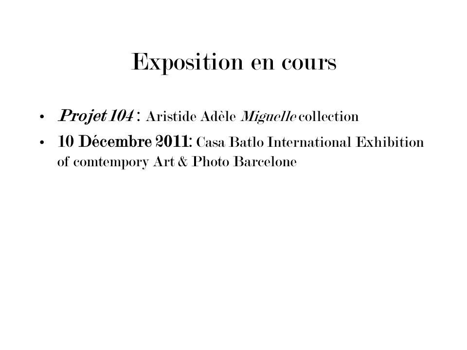 Exposition en cours Projet 104 : Aristide Adèle Miguelle collection