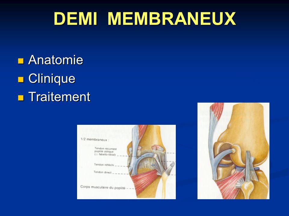 DEMI MEMBRANEUX Anatomie Clinique Traitement