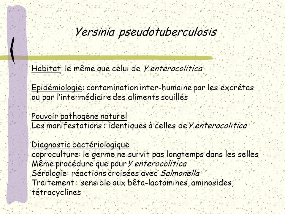 Yersinia pseudotuberculosis