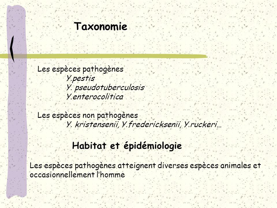 Taxonomie Habitat et épidémiologie Les espèces pathogènes Y.pestis