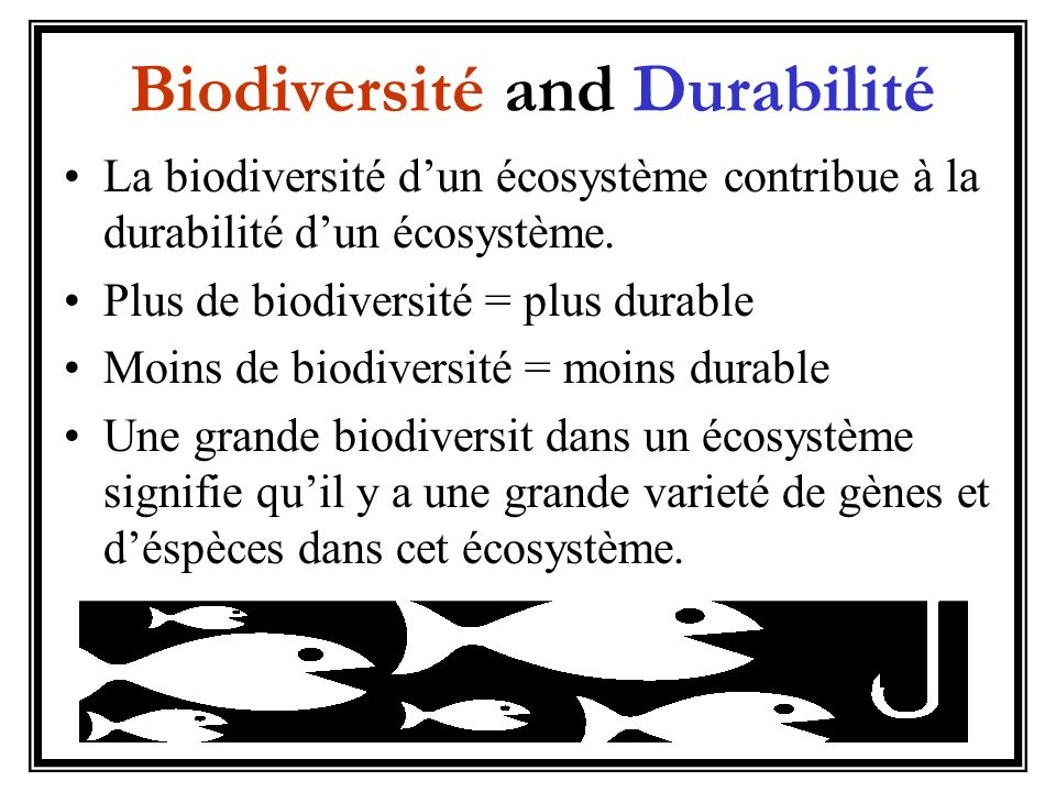 Biodiversité and Durabilité