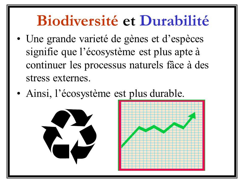 Biodiversité et Durabilité
