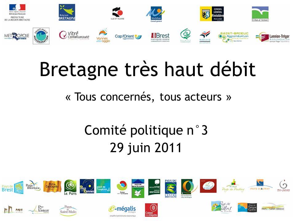 Comité politique n°3 29 juin 2011