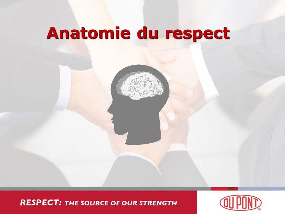 Anatomie du respect
