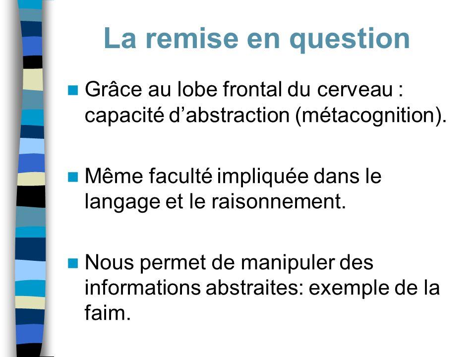 La remise en question Grâce au lobe frontal du cerveau : capacité d'abstraction (métacognition).